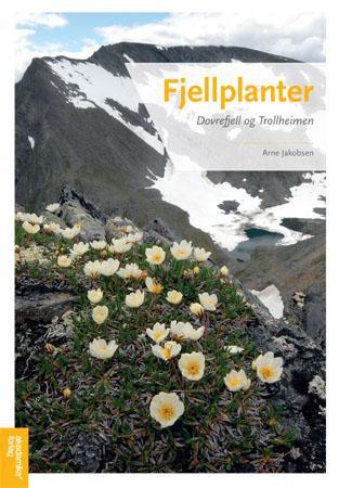 Bilde av Fjellplanter