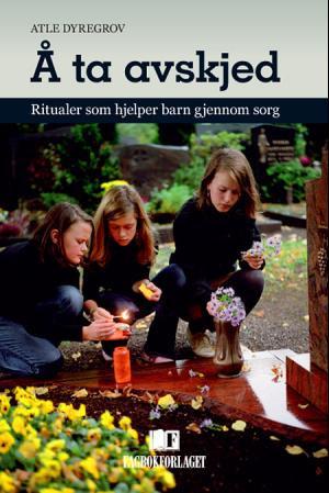 Bilde av Å Ta Avskjed