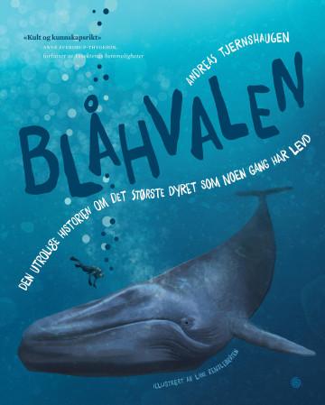 Bilde av Blåhvalen