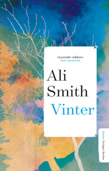 Vinter av Ali Smith (Ebok)