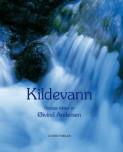 Kildevann