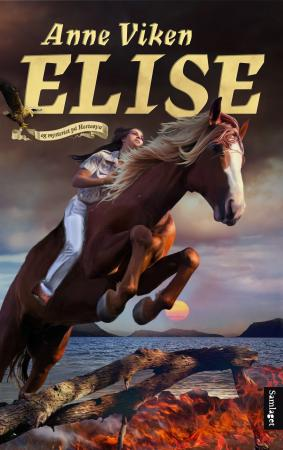 Bilde av Elise Og Mysteriet På Hesteøya