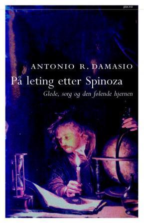 Bilde av På Leting Etter Spinoza