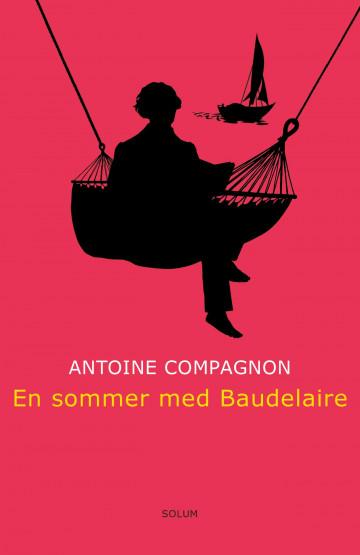 Bilde av En Sommer Med Baudelaire