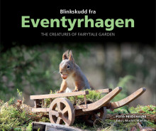 Blinkskudd fra Eventyrhagen = The creatures of Fairytale garden av Morten Mæhre (Innbundet)