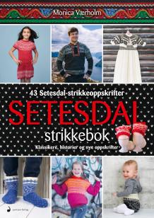 Setesdal strikkebok av Monica Værholm (Innbundet)