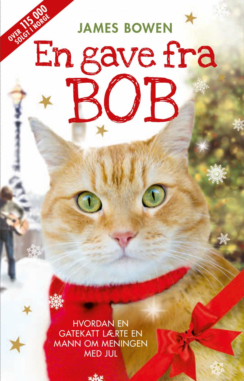 Bilderesultat for bobs bok