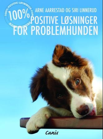 Bilde av 100% Positiv Problemløsning