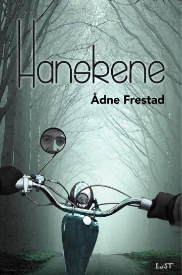 Bilde av Hanskene