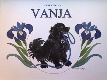 Bilde av Vanja