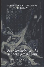 Frankenstein; Or, The Modern Prometheus av Mary Wollstonecraft Shelly (Heftet)