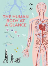 Omslag - The Human Body at a Glance