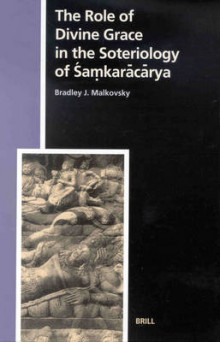 The Role of Divine Grace in the Soteriology of Samkaracarya av Bradley J. Malkovsky (Innbundet)