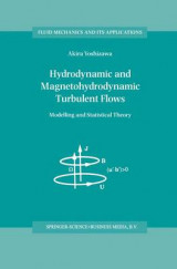 Omslag - Hydrodynamic and Magnetohydrodynamic Turbulent Flows
