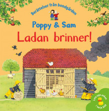 Ladan brinner! av Heather Amery og Stephen Cartwright (Innbundet)
