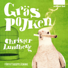 Gräspojken av Christer Lundberg (Lydbok MP3-CD)