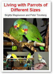 Living with Parrots of Different Sizes av Birgitta Magnusson og Peter Tössberg (Innbundet)