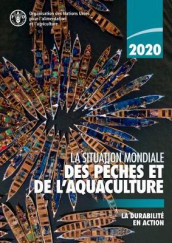 La situation mondiale des peches et de l'aquaculture 2020 av Food and Agriculture Organization of the United Nations (Heftet)