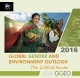 Omslag - Global Gender and Environment Outlook 2016: The Critical Issues