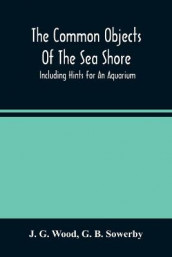 The Common Objects Of The Sea Shore av G B Sowerby og J G Wood (Heftet)