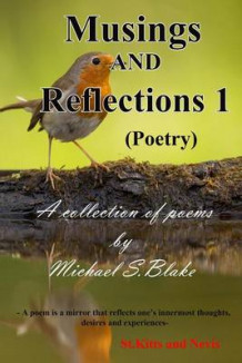 Musings and Reflections av Michael Sylvester Blake (Heftet)