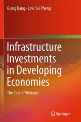Omslag - Infrastructure Investments in Developing Economies