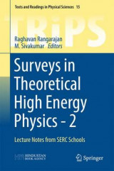 Omslag - Surveys in Theoretical High Energy Physics: No. 2