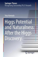 Omslag - Higgs Potential and Naturalness After the Higgs Discovery