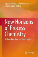 Omslag - New Horizons of Process Chemistry