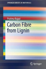 Omslag - Carbon Fibre from Lignin 2017