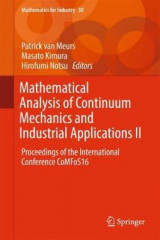 Omslag - Mathematical Analysis of Continuum Mechanics and Industrial Applications II