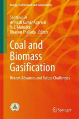 Omslag - Coal and Biomass Gasification