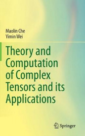 Theory and Computation of Complex Tensors and its Applications av Maolin Che og Yimin Wei (Innbundet)