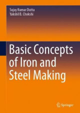 Omslag - Basic Concepts of Iron and Steel Making