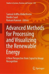 Omslag - Advanced Methods for Processing and Visualizing the Renewable Energy