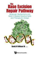 Omslag - The Base Excision Repair Pathway: Molecular Mechanisms and Role in Disease Development and Therapeutic Design